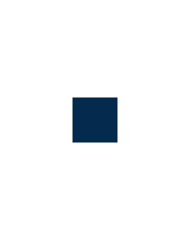 PP BLEU 5013 125G - PATES PIGMENTAIRES
