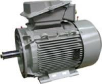 Industrial-level motors for Naval defense  - MNI - MNN - MNR 0.5 to 750 kW