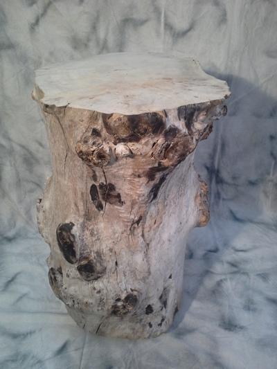 Mange debout france entreprises for Fournisseur bois flotte
