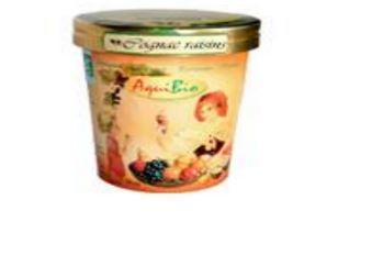 Crème glacée rhum raisin - Glaces biologiques