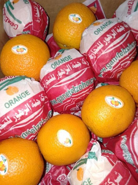Valencia  -  Egyptian Orange