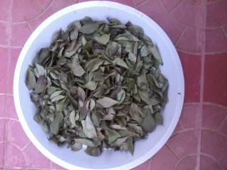 Dried Curry Leafs