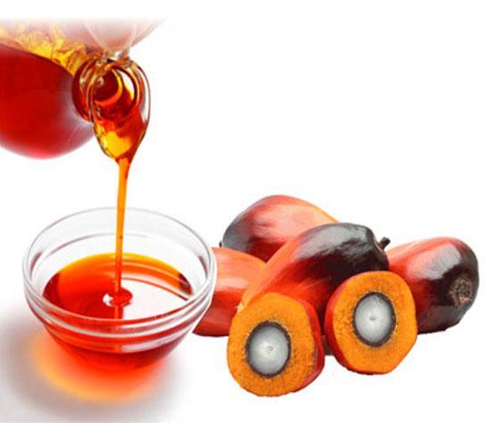 Crude Palm Oil - Oil