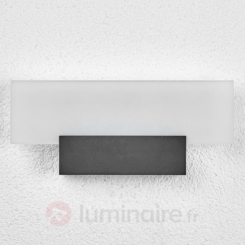 Impressionnante applique d'extérieur LED Rieke - Appliques d'extérieur LED