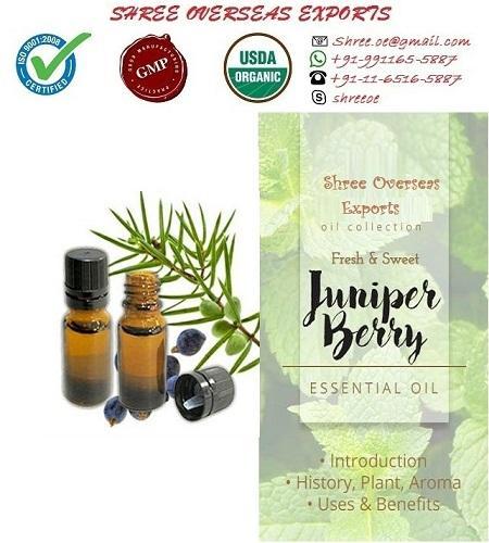 Organic Juniper Berry Oil - USDA Organic