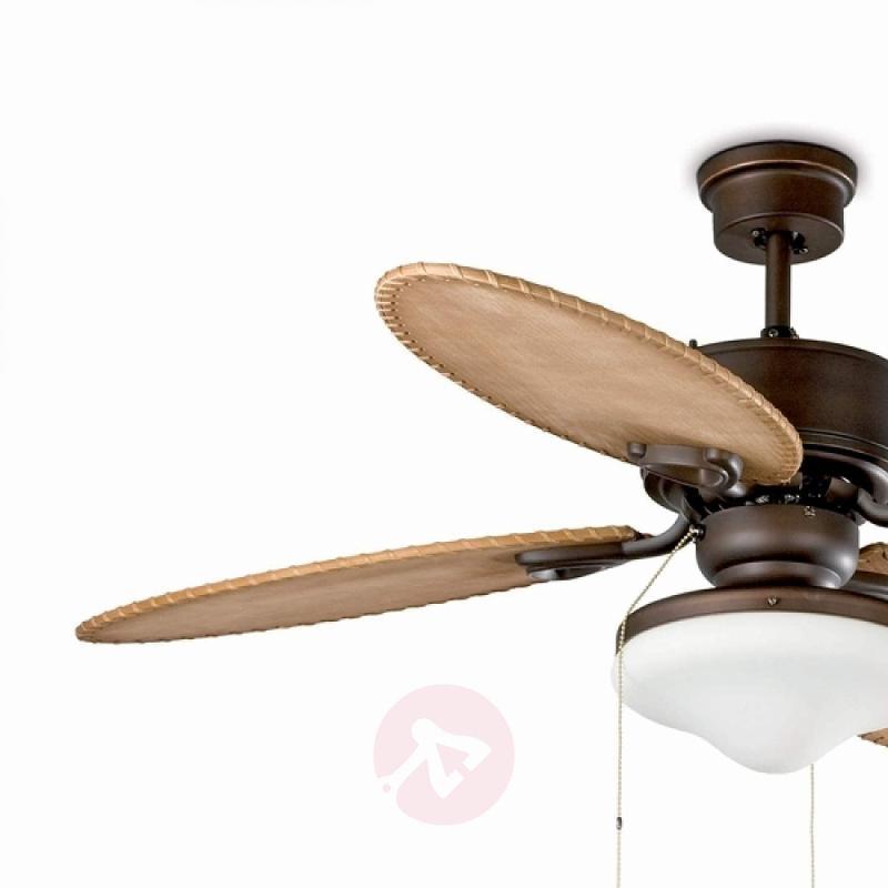LOMBOK Ceiling Fan with Glass Lamp - fans