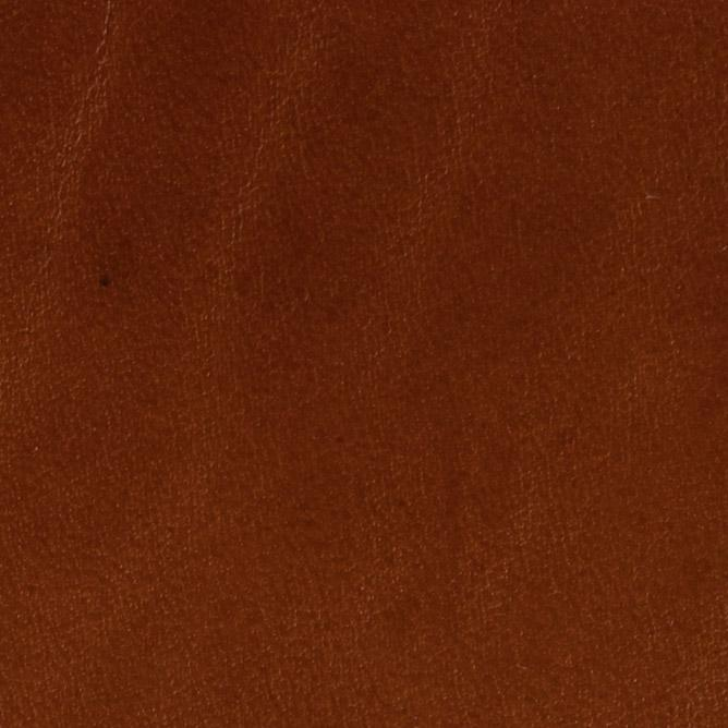 Dakota - Leather for belts and leather goods