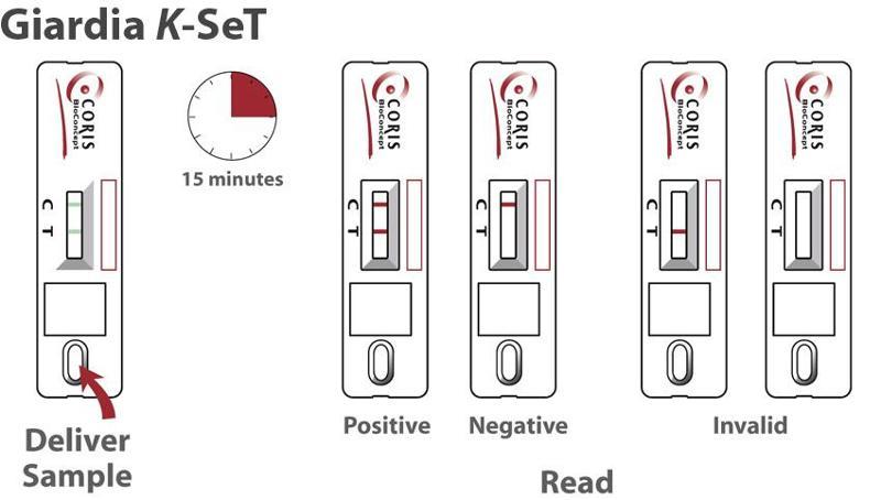 cassettes test for detection of Giardia in stool specimens - null
