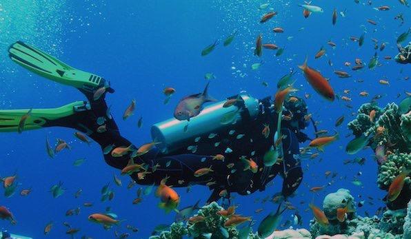 Curso de Buceo Open Water  -