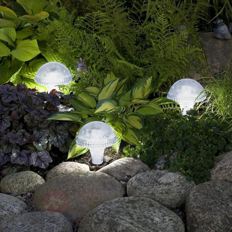 Lampe solaire transparente New Assisi translucide - Toutes les lampes solaires