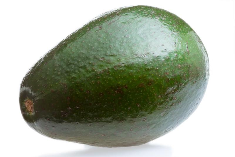 Avocat  - tropical