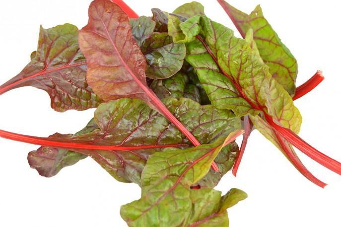 Red chard - Légumes - jeunes pousses