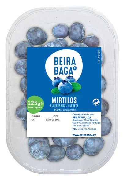 Blueberries  - Mirtilos