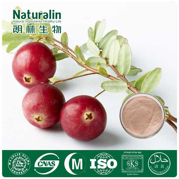 Cranberry Extract -