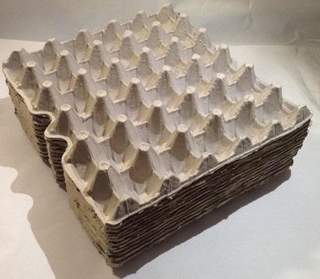 Egg Carton Tray