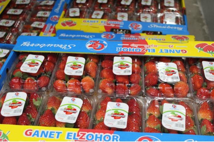 Egyptian fresh strawberries  - Fresh & Sweet