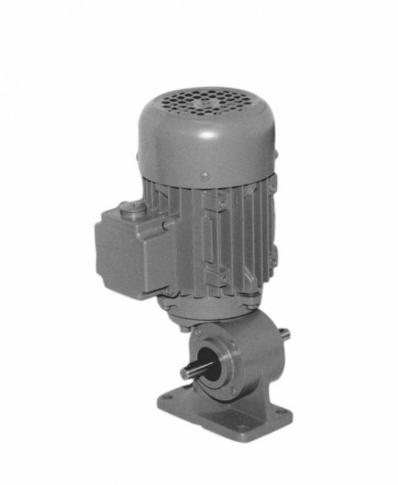 SN3S - Einstufiger Getriebemotor mit Ausgangswelle
