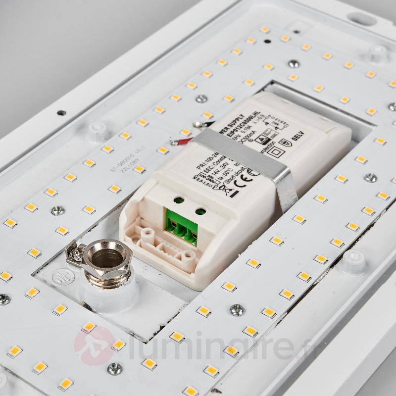 Applique d'extérieur LED intemporelle Maxine - null