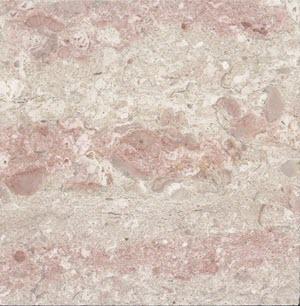 Poymer Pink Beige Bej