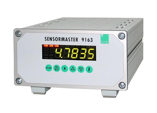 Sensormaster - 9163 - 单通道或多通道版本,用于应变传感器,电位计,标准信号,Pt100和TC