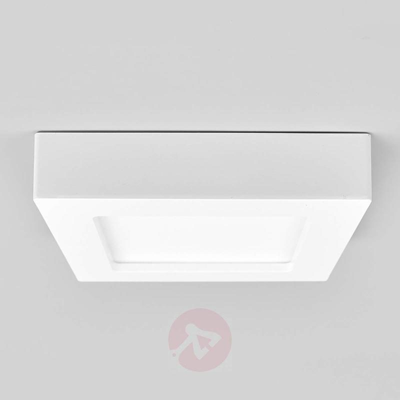 Bathroom ceiling light Rayan with LED - Ceiling Lights
