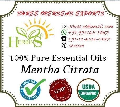 Organic Mentha Shivalik Oil - USDA Organic