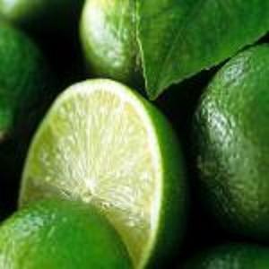 Polvo de extracto de naranja amarga - Extractos de plantas
