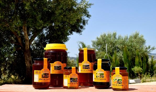 Spanish Honey