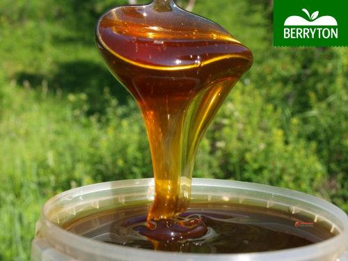 Buckwheat honey - Homogonizated