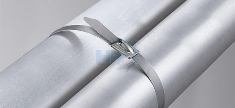 Stainless Steel Ties - Ball Lock Type,SS304 / SS316,200mm,100lbf