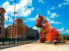 Mudanzas Bilbao - Servicios