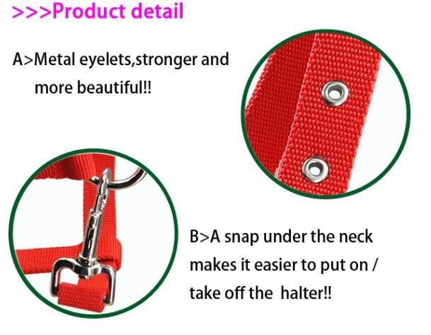 horse halter,stainless steel hardware - horse halter