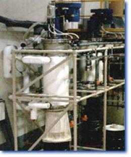 Plants Drying - DTS 1.6x2 Thin Film Dryer
