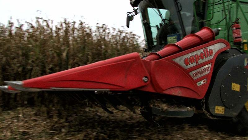 Cabezal para maíz  - DIAMANT