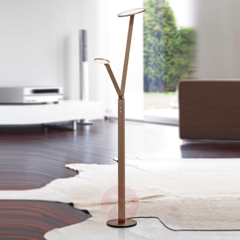 LED floor lamp Ayana, 2-light, with 4-level dimmer - Floor Lamps
