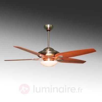 Ventilateur de plafond Altara avec 5 pales en bois - Ventilateurs de plafond lumineux