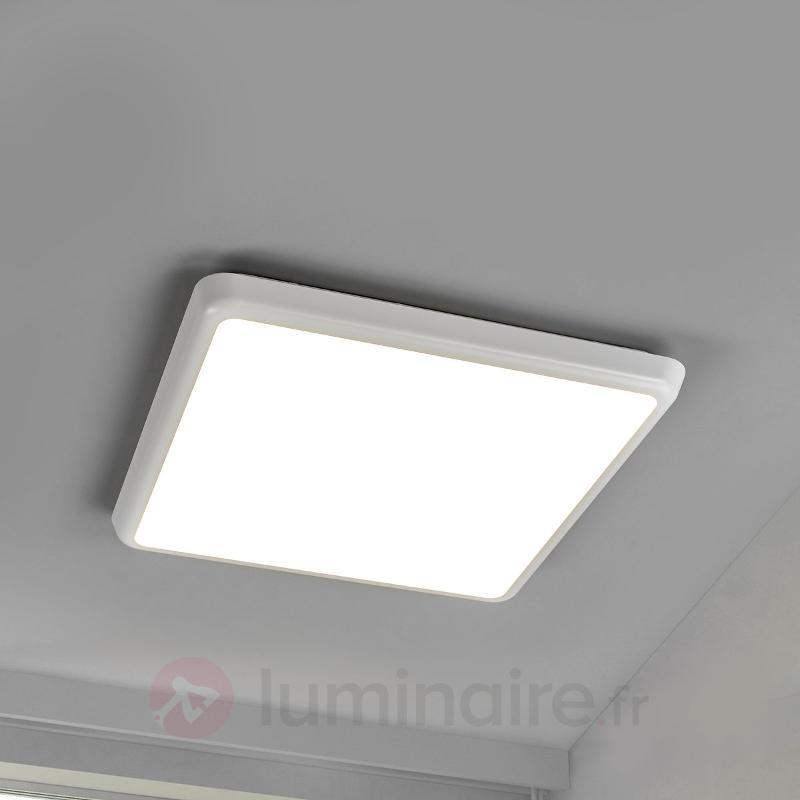 Plafonnier discret Augustin avec LED, IP54 - Plafonniers pour locaux humides