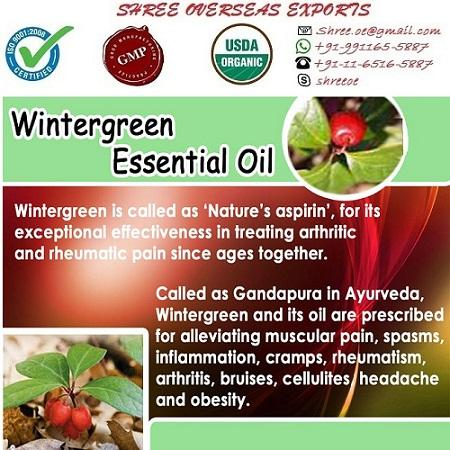 Organic Wintergreen Oil - USDA Organic