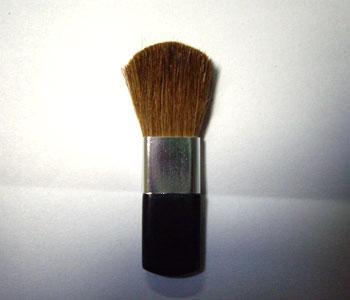 Brush - B08