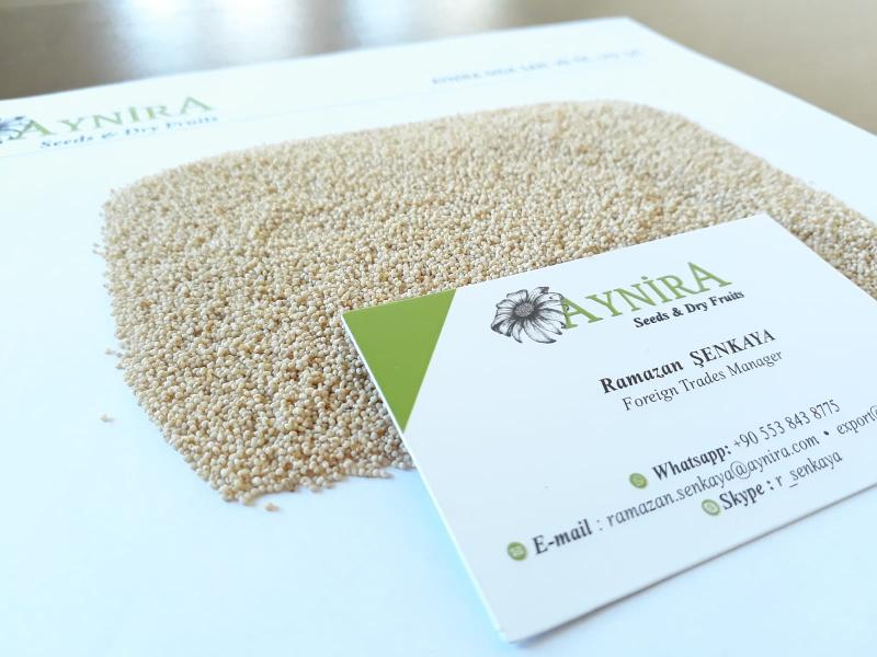 Turkish Origin Poppy Seeds - White Poppy Seeds; Sortex or Machine Cleaned