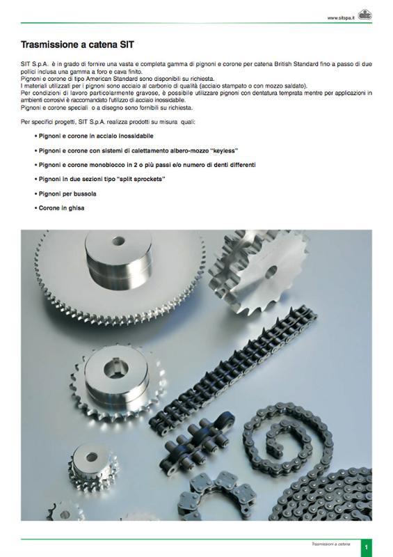 Catene trasmissione potenza - Trasmissione a catena e ingranaggi