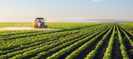 Consulenza diritto agrario -