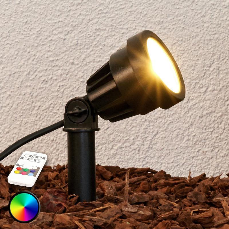 Projecteur sur piquet LED Albien, RVB - Lampes à planter