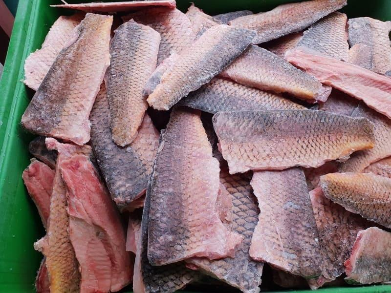 Frozen glazed carp fillet  -