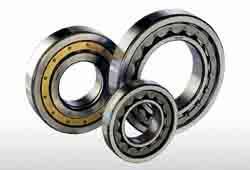 Cuscinetti a rulli cilindrici - Marchio Mtk