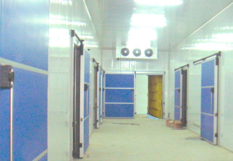Complexe frigorifique - Complexe pouvant être constitué de chambres froides et de salles de travail