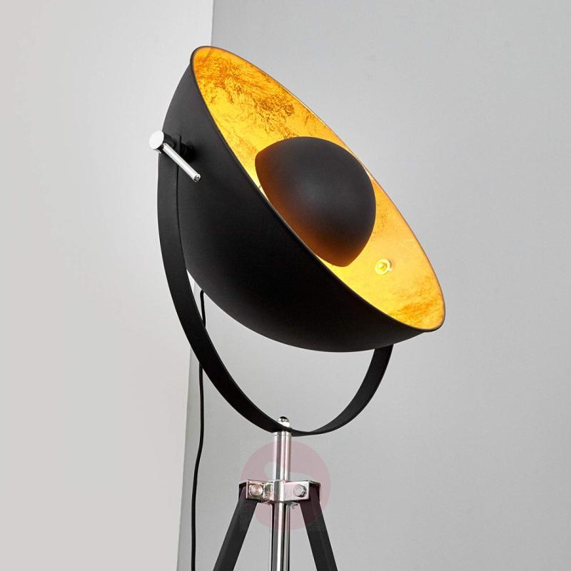 Extravagant floor lamp Mineva in black and gold - indoor-lighting