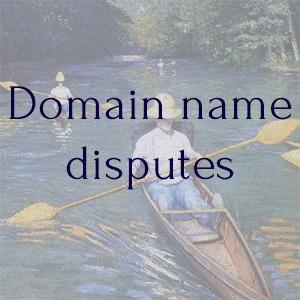 Domain name protection  -