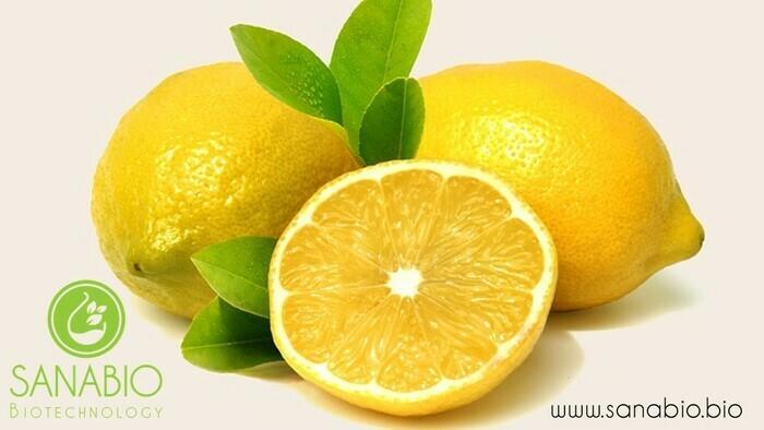 Zitronenöl, BIO - null