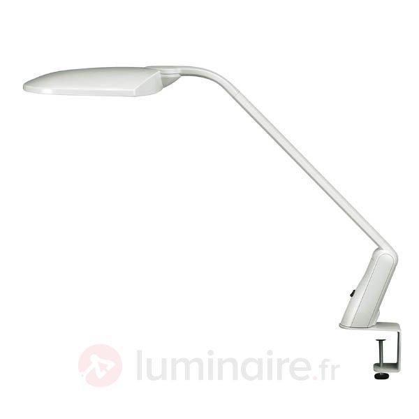Lampe à poser DUO gris clair avec pince - Lampes à pince